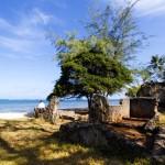 Jumba-ruins (6)